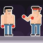Mr: Fight