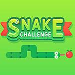 Snake Challenge
